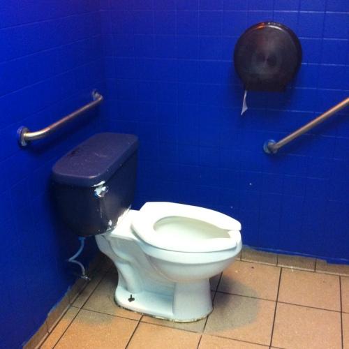 Taco Blue Toilet