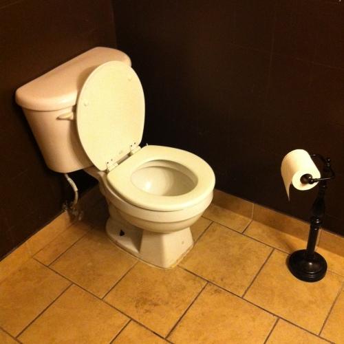 Portable Toilet Roll Holder