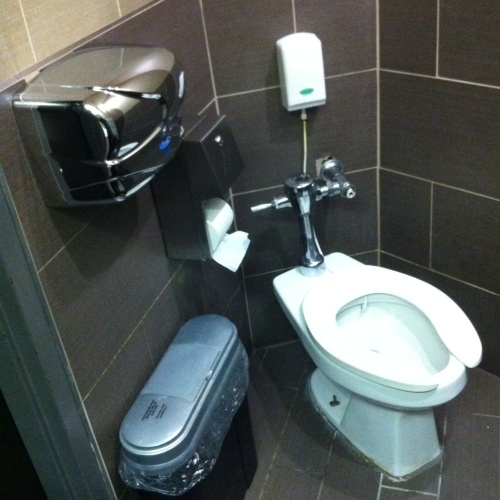 Highest toilet in Toronto