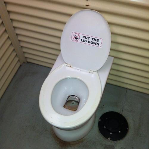 Hybrid toilet