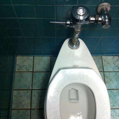 Santa Monica Toilet