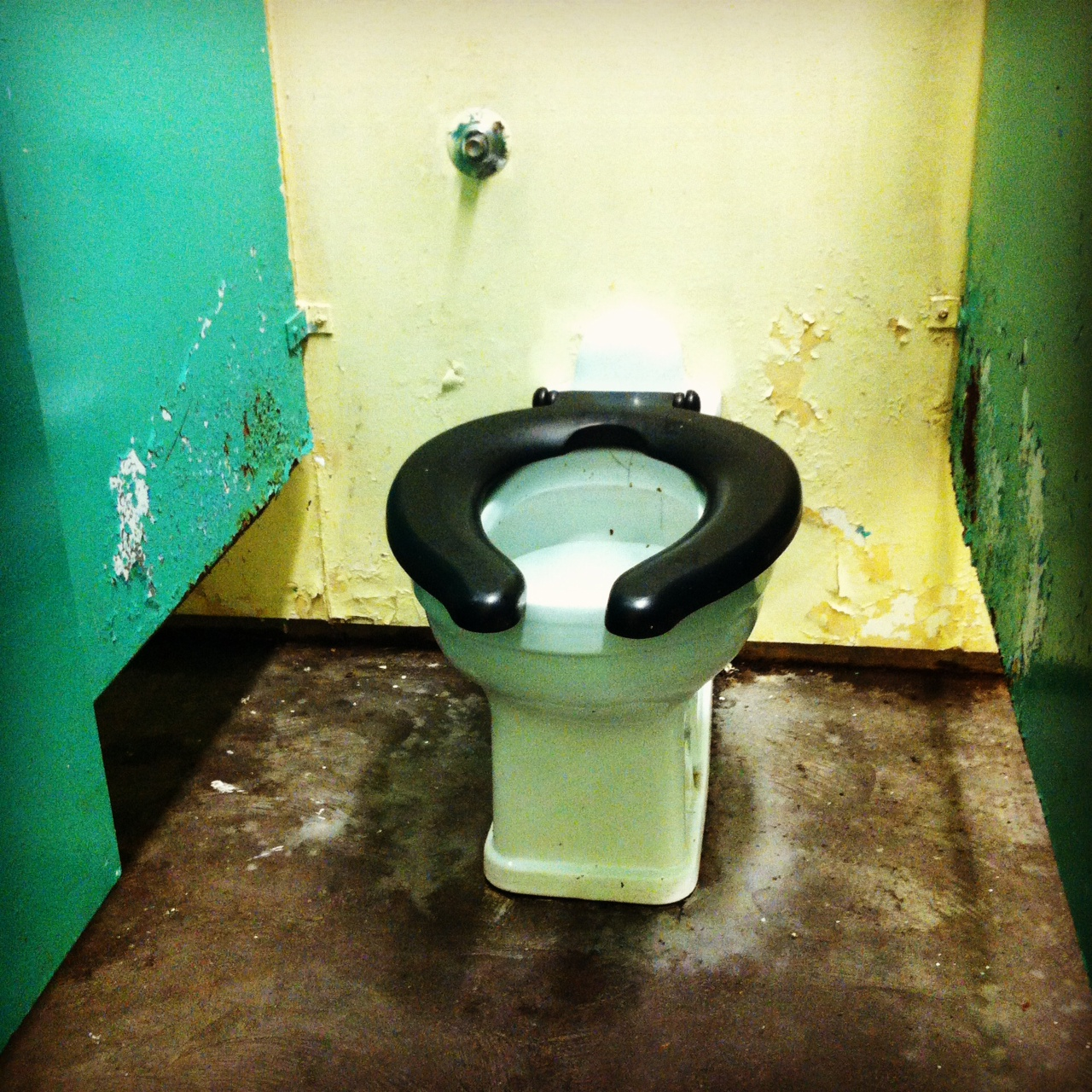 A slightly dilapidated public toilet on the otherwise gorgeous Toronto Islands. public toilet   Toilography