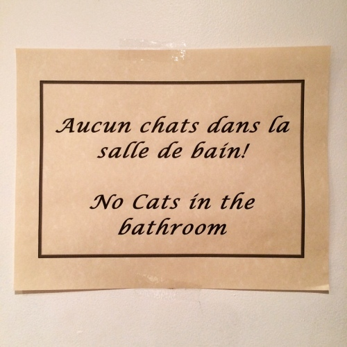 No cats in the bathroom