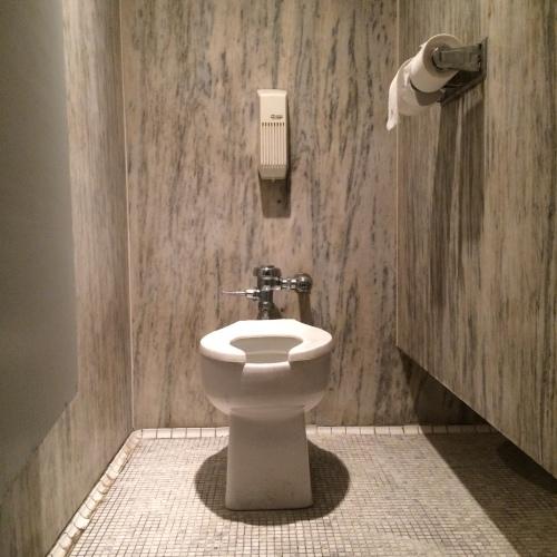 Marble Toilet 2