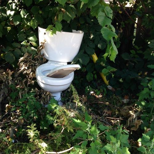 Tarzan toilet