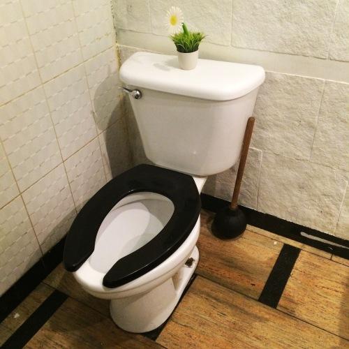 A flower on the cistern