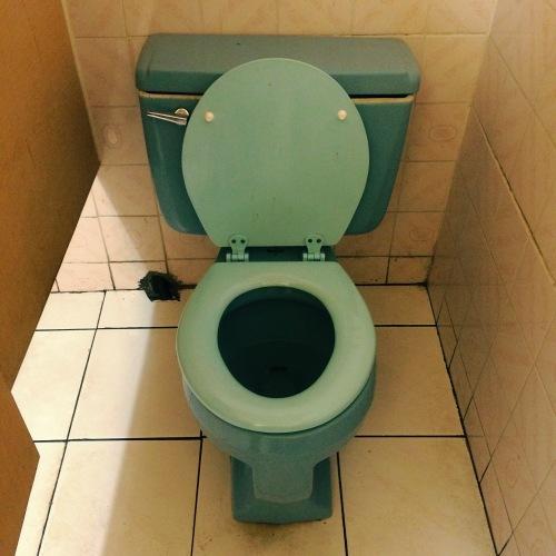 buddhas-blue-toilet